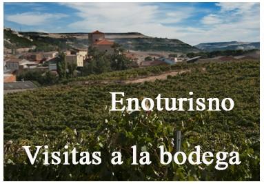 Wine Torusim Convento Oreja